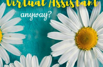 So what is a Virtual Assistant anyway